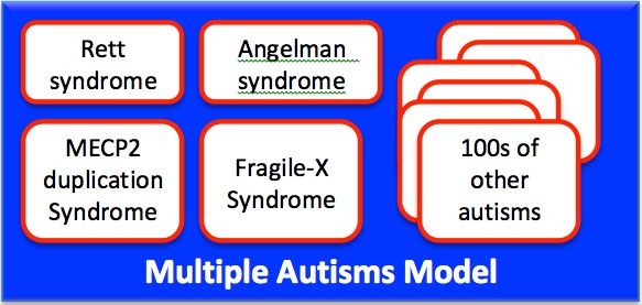 Multiple Autisms Model