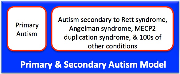 Primary & Secondary Autism Model